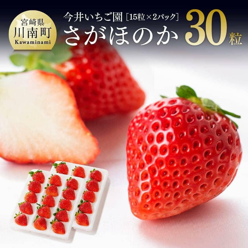【ふるさと納税】宮崎県産いちご!さがほのか合計1.6kg以上!平成31年1月から3月にかけて発送分 人気のイチゴ