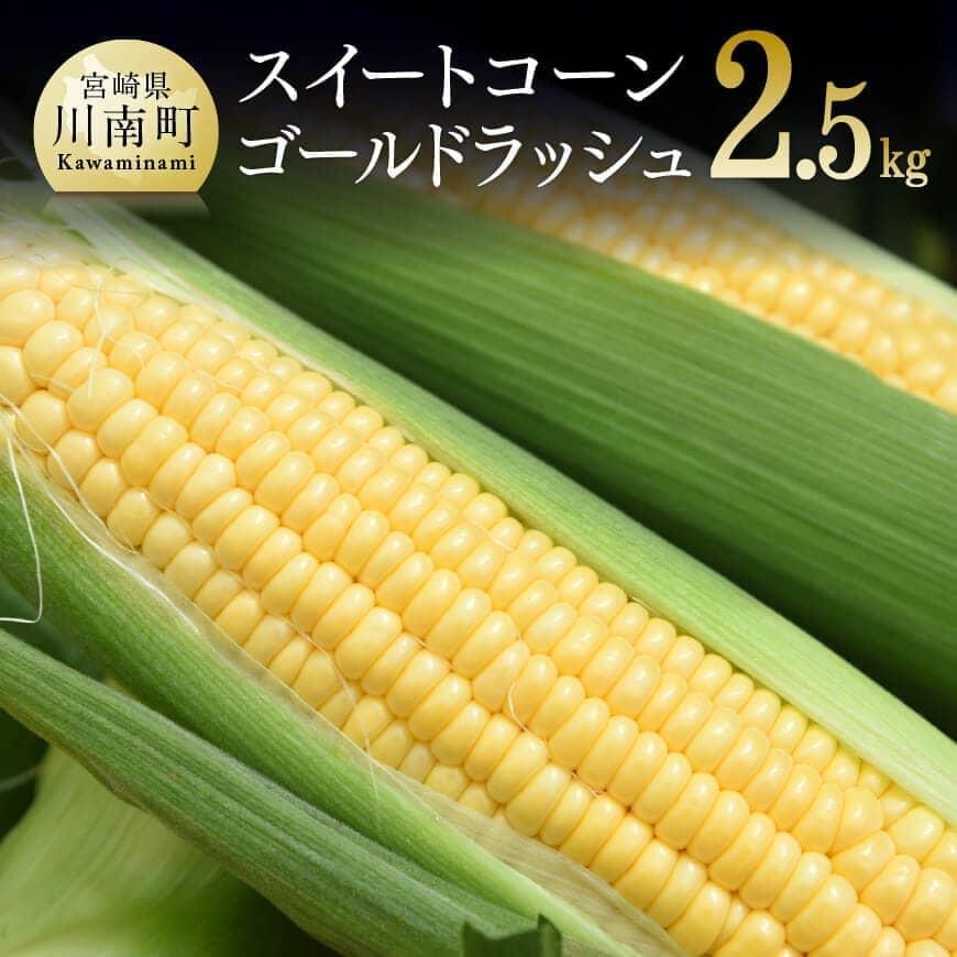 【ふるさと納税】農家直送!スイートコーン2.5kg