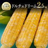 【ふるさと納税】農家直送!ドルチェドリーム2.5kg