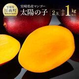 【ふるさと納税】完熟マンゴー「太陽の子」4L×2ケ