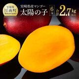 【ふるさと納税】マンゴー「太陽の子」6玉