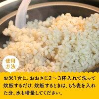【ふるさと納税】食物繊維が豊富な川南町産もち麦