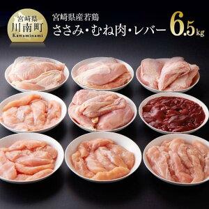 【ふるさと納税】宮崎県産若鶏 合計6.5kg【九州産 宮崎県産 肉 鶏肉 ささみ むね レバー 小分け おうち時間 おうちごはん 送料無料 川南町】G7803