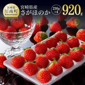 【ふるさと納税】 宮崎県産いちご「さがほのか」 230g×4パック 九州産 イチゴ 苺 果物 フルーツ 産地直送 期間限定 季節限定 人気 G7208