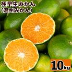 極早生みかん10kg【あくね旬の店いきいき館】2-39