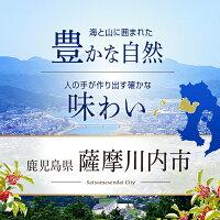 豊かな自然味わい鹿児島県薩摩川内市