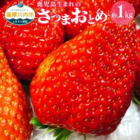 【ふるさと納税】さつまおとめ 合計約1kg 250g×4パック いちご イチゴ 苺 果物 フルーツ 鹿児島生まれ 鹿児島県 薩摩川内市 送料無料