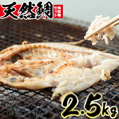 【ふるさと納税】海産物セット天然鯛!旬の魚の干物セット(総2.5kg)獲れたてタイと旬の魚介類♪【吹上町漁協】