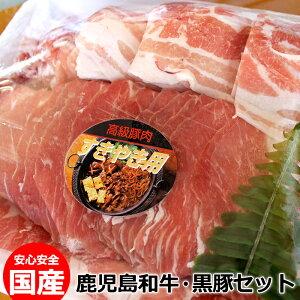 【ふるさと納税】鹿児島和牛・黒豚セット【徳重精肉店】