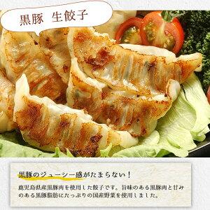 【ふるさと納税】鹿児島黒豚の生餃子(12個×12P・計144個)黒豚と国産野菜にこだわりあり!おかずにもおつまみにも♪【鹿児島協同食品】