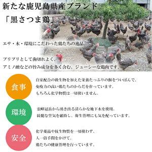 【ふるさと納税】大人気!黒さつま鶏タタキ(計800g・200g×4)鹿児島特産の鶏肉の鳥刺し!【ヤブサメファーム】