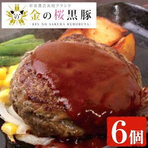 【ふるさと納税】鹿児島県産!金の桜黒豚煮込みハンバーグ(180g×6個)お手軽!レンジで簡単温めるだけで本場鹿児島の味!【エーエフ】