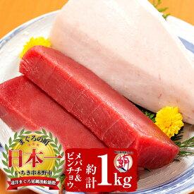 【ふるさと納税】天然マグロ詰め合わせセット!合計約1kg ビンチョウマグロ(約600g) メバチマグロ(約400g)【海鮮まぐろ家】
