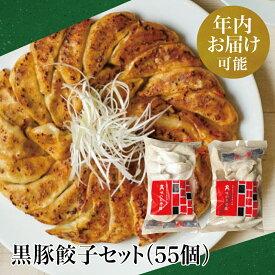 【ふるさと納税】【年内お届け指定OK】黒豚餃子セット(55個)