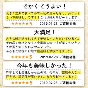 https://image.rakuten.co.jp/f462217-shibushi/cabinet/05160843/yamada_yusui_04.jpg