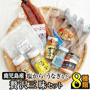 【ふるさと納税】贅沢!志布志湾でとれた新鮮なミズイカ、ちりめんなどを使用した塩からに鹿児島産鰻など8種のセット【北崎水産】b5-015
