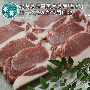 【ふるさと納税】鹿児島県奄美大島産「島豚」ロース(とんかつ用)1kg
