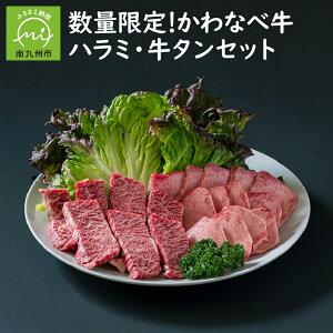 【ふるさと納税】数量限定!かわなべ牛ハラミ・牛タンセット