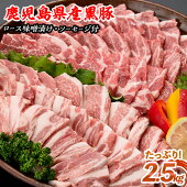 【ふるさと納税】黒豚焼肉セット
