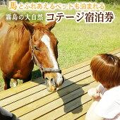 https://image.rakuten.co.jp/f464520-yusui/cabinet/img01/y074_smn.jpg