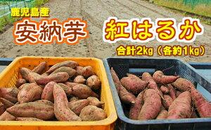 【ふるさと納税】【07614】東串良の濃密安納芋と特選紅蜜芋紅はるかセット 2kg