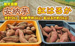 【ふるさと納税】【13616】東串良の濃密安納芋と特選紅蜜芋紅はるかセット 9kg