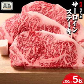 【ふるさと納税】特選のざき牛サーロインステーキ 約200g×5枚
