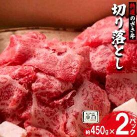 【ふるさと納税】特選のざき牛 切り落とし約450g×2パック