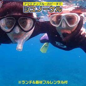 【ふるさと納税】アマミアンブルーのビーチでシュノーケル 奄美の海を満喫!