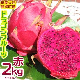【ふるさと納税】奄美大島 龍郷産ドラゴンフルーツ赤 2kg(4~8玉入り)