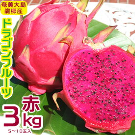 【ふるさと納税】奄美大島 龍郷産ドラゴンフルーツ赤 3kg(5~10玉入り)