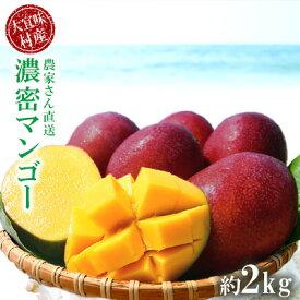 【ふるさと納税】濃密マンゴー《秀品・2Kg》【2021年発送】大宜味村農家さんから直送