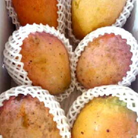 【ふるさと納税】訳あり品!!大宜味村産マンゴー【2Kg・白箱】2021年発送