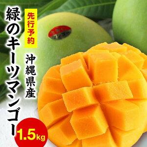 【ふるさと納税】緑のマンゴーキーツ(1.5kg)【先行予約】【2021年8月下旬〜9月頃発送】