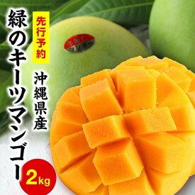 【ふるさと納税】緑のマンゴーキーツ(2kg)【2021年9月下旬〜10月頃発送】