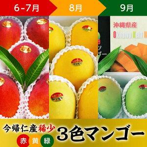 【ふるさと納税】【100セット限定】稀少3色マンゴー食べ比べセット(赤・黄・緑)【先行予約】【2021年6月〜7月頃・8月頃・9月頃】