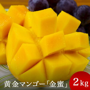【ふるさと納税】黄金(くがに)マンゴー「金蜜」(2kg)