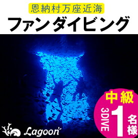 【ふるさと納税】恩納村万座近海ボートファンダイビング中級(AOW)3DIVE(1名様)