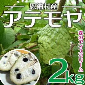 【ふるさと納税】【2021年発送】森のアイスクリーム 恩納村産アテモヤ 2kg