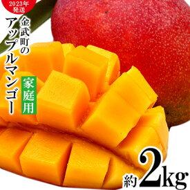【ふるさと納税】【2021年発送】農家さん直送!アップルマンゴー約2kg 家庭用