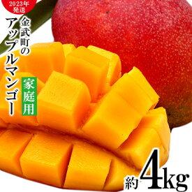 【ふるさと納税】【2021年発送】農家さん直送!アップルマンゴー約4kg 家庭用