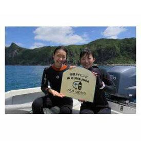 【ふるさと納税】ダイビングパラダイス!久米島で体験ダイビング【ペア】