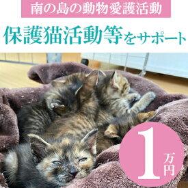 【ふるさと納税】【南の島の動物愛護活動】保護猫活動等をサポート(1万円)