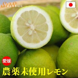 訳あり 国産 農薬未使用 レモン 3kg 「 無農薬 」の表示は国のガイドラインで表示禁止 愛媛 大三島 又は 広島 瀬戸内 ore 10g SSS