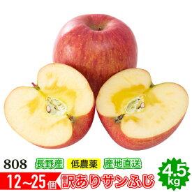 12月以降分予約 減農薬 サンふじ りんご 訳あり 約4. 5kg 12〜25個入 長野 リンゴ 林檎 さんふじ サンフジ 小山 SSS 12j