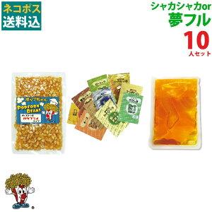 1000円ポッキリ 送料無料 シャカシャカ 夢フル ポップコーン 10人材料セット