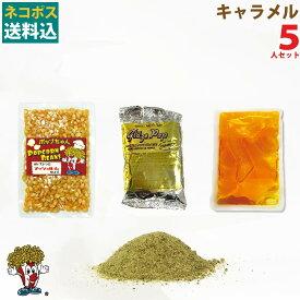【訳あり】ネコポス送料込 キャラメルポップコーン5人材料セット
