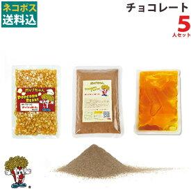 ネコポス送料無料 チョコレート ポップコーン 5人材料セット フレーバー 豆
