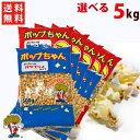 送料無料ポップコーン豆 5kg バタフライ or マッシュルーム タイプ (500g×10袋)(約250人分)