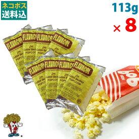 ネコポス 送料込 ポップコーン フレーバー バターソルト パウダー 調味塩 113g × 8袋 FLAVACOL ポップコーン バレンタイン 手作り お菓子 製菓材料 お菓子パーティ